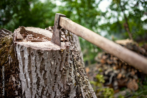 Papiers peints Jardin lumberjack hatchet on pile of wood and timber in forest
