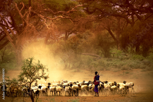 shepherd leading a flock of goats
