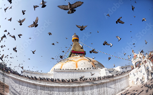 Wall Murals Nepal Bodhnath stupa with flying birds