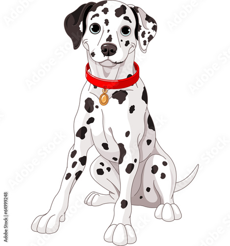 Printed kitchen splashbacks Fairytale World Cute Dalmatian Dog