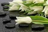 Fototapeta Kamienie - Biały tulipan z kamieniami do spa