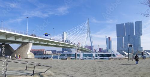 Deurstickers Rotterdam erasmus bridge Rotterdam