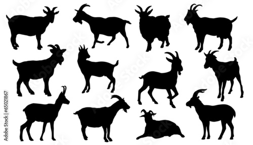 Fotomural goat silhouettes