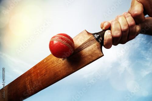 Stampa su Tela Cricket player hitting ball