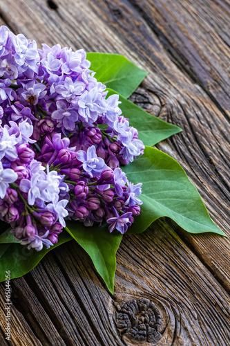 kwiaty-bzu