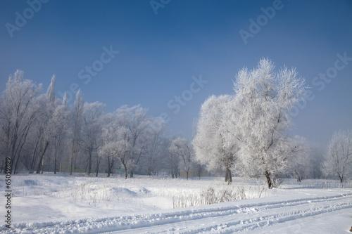 Spoed Foto op Canvas Blauwe hemel The image of landscape