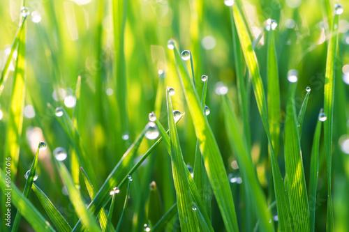 Mit leichten Regentropfen