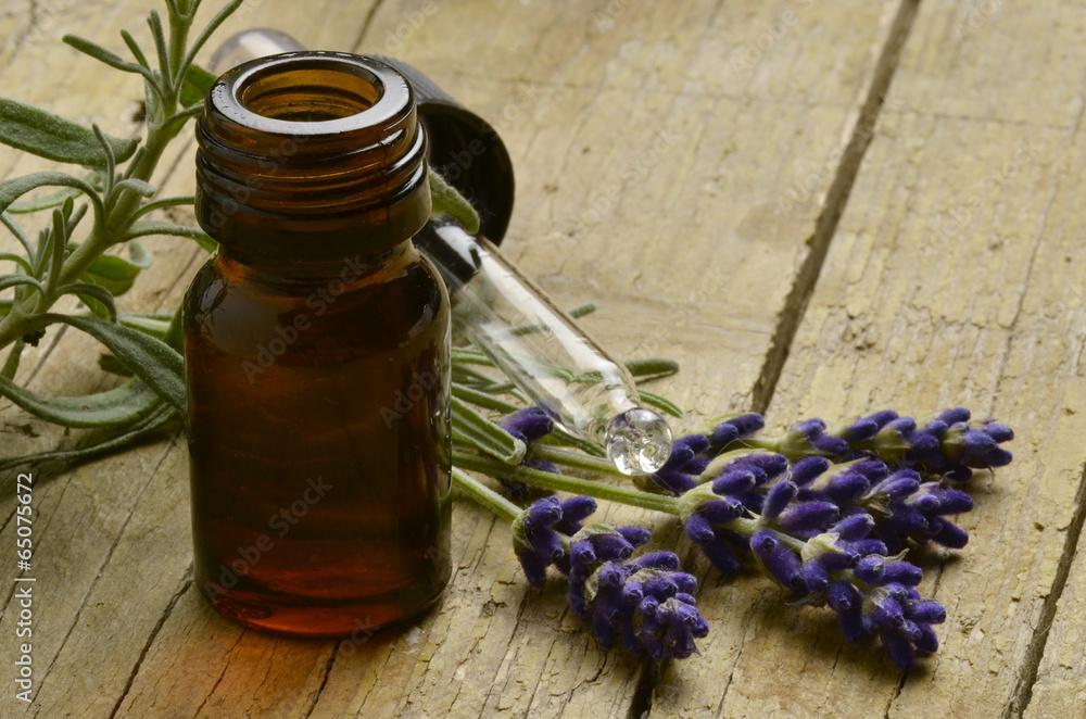 Fototapety, obrazy: Lavandula Lavanda Lawenda Lavendel Лаванда