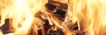 Burning Coals Close-up