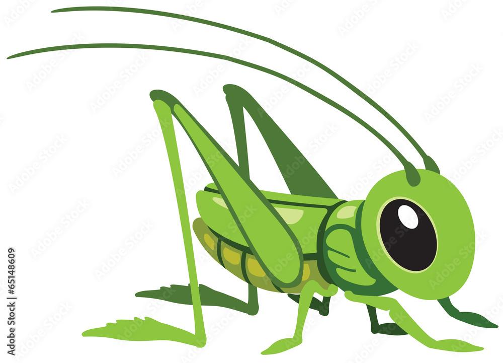 Fotografie, Obraz cartoon grasshopper