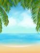 palm tree tropical beach