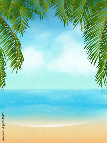 palm tree tropical beach