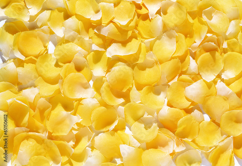 Background of delicate yellow flower petals