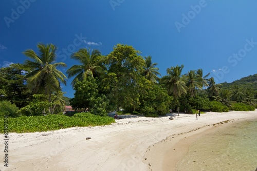Foto op Canvas Tropical strand Anse Royal 2