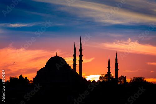 Obraz na plátne  Istanbul