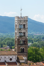 Tower Of Cathedral Of Lucca