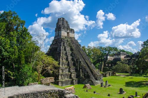 fototapeta na szkło Tikal w Gwatemali Maya Ruinen