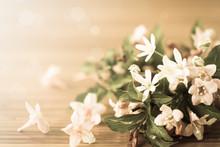 Weigel Beautiful  Flowers