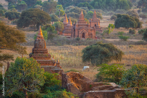Fototapety, obrazy: temples in Bagan, Myanmar