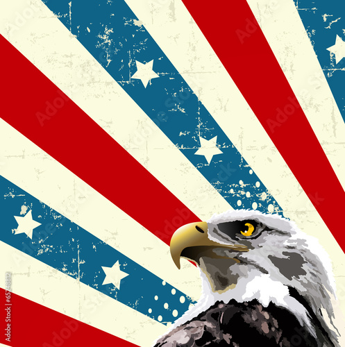 Printed kitchen splashbacks Fairytale World Bald Eagle