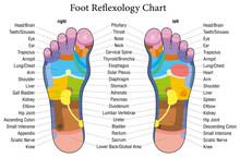 Foot Reflexology Chart Descrip...
