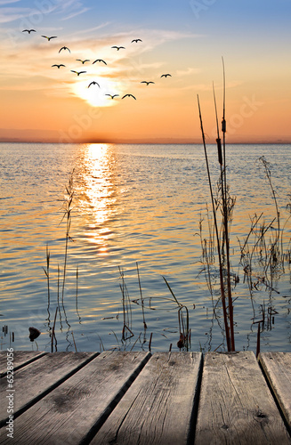paseo de madero por la orilla del lago