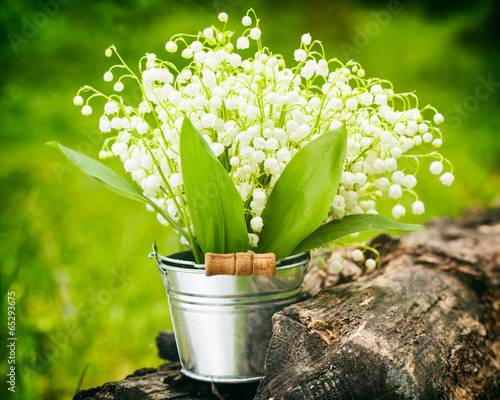 Poster Muguet de mai Lily of the valley flowers in bucket in forest