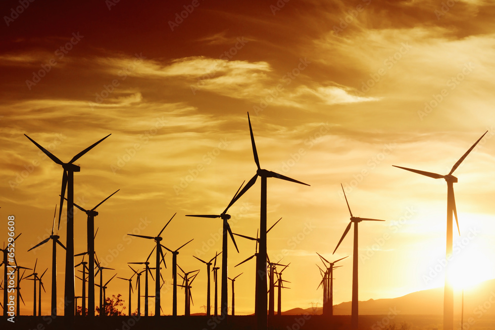 Fototapety, obrazy: Wind Turbrines at Sunset