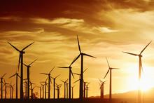 Wind Turbrines At Sunset