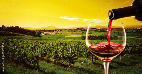 Papiers peints Vignoble drink in the vineyard at the sunset