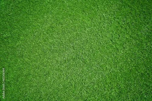 Deurstickers Gras Rasen-Hintergrund
