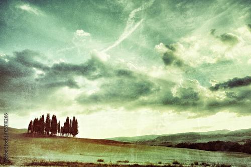 Keuken foto achterwand Olijf Tuscan rural landscape