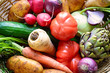 Korb gefüllt mit frischem Gemüse aus dem Garten