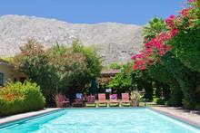 Swimming Pool Oasis In California