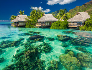 Obraz na SzkleBeautiful above and underwater landscape of a tropical resort