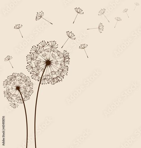 Fototapeta dmuchawce   dandelions-background-vector
