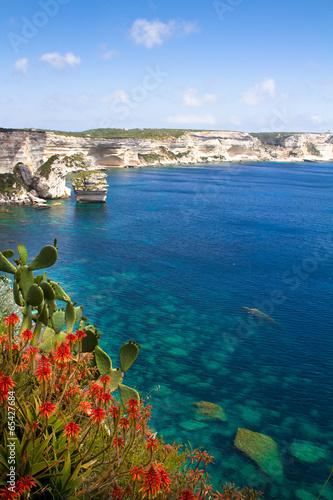Fototapeta Skalisty brzeg okolic Bonifacio, Korsyka w słoneczny dzień wysoka