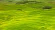 Leinwanddruck Bild - Green hills of Tuscany, Italy