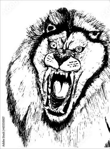 Deurstickers Hand getrokken schets van dieren hand drawn roaring lion head
