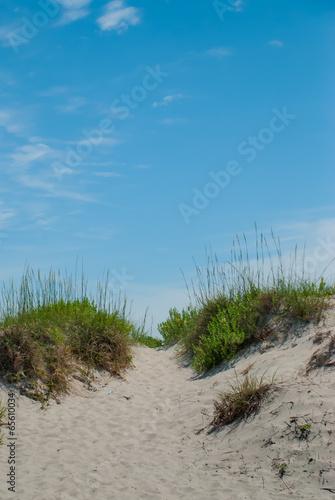 Cadres-photo bureau La Mer du Nord Walkway to the Beach over Dunes