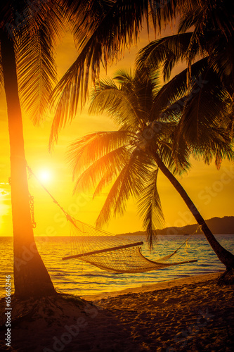 Hammock silhouette with palm trees on a beautiful at sunset Canvas Print