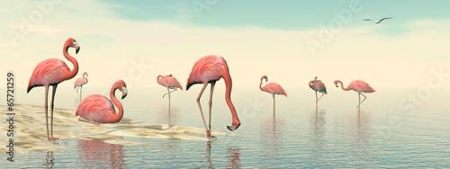 Fotografie, Obraz  Flock of pink flamingos - 3D render