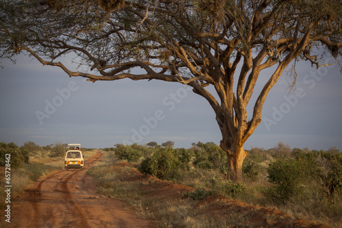 Safari vehicle in African wilderness