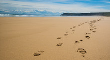 Footprints Of Hiking Boots On The Sand Of A Remote Beach In Scot