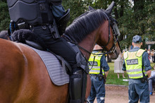 Mounted Police Horse And Polic...