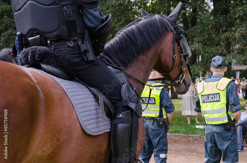 Cuadros en Lienzo mounted police horse and policeman public event