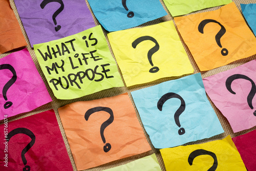 What is my life purpose question Wallpaper Mural