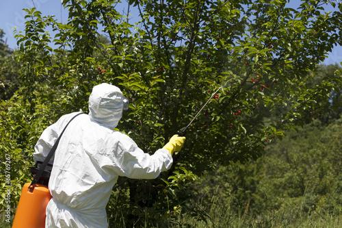 Fotografía  Pesticide spraying