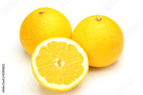 Fotografia  Japanese orange