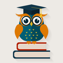 Wise Owl Sitting On The Books....